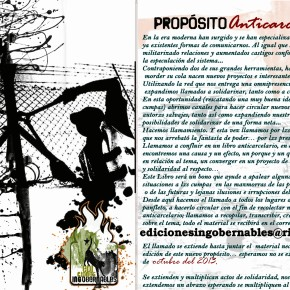 CHILE: A PROPÓSITO DE ANTICARCELARIO