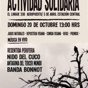 SANTIAGO, CHILE: ACTIVIDAD SOLIDARIA